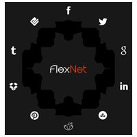Media Społecznościowe - FlexNet