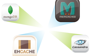 Monitoring_NoSQL-ehcache