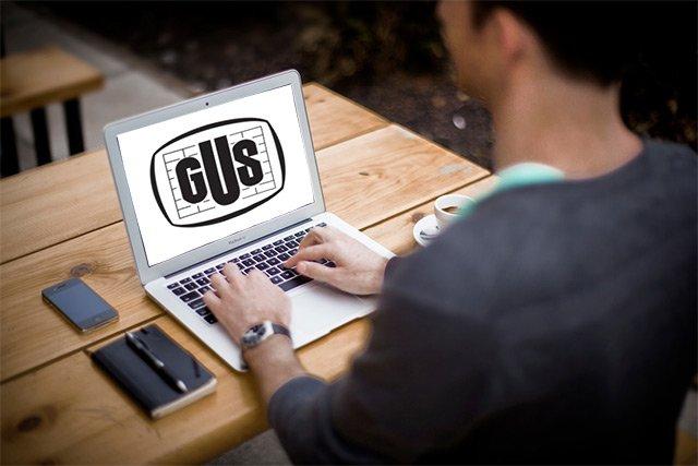 szkolenia flexnet gus - Administracja publiczna